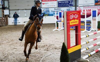 Drentse Kampioenschappen pony's